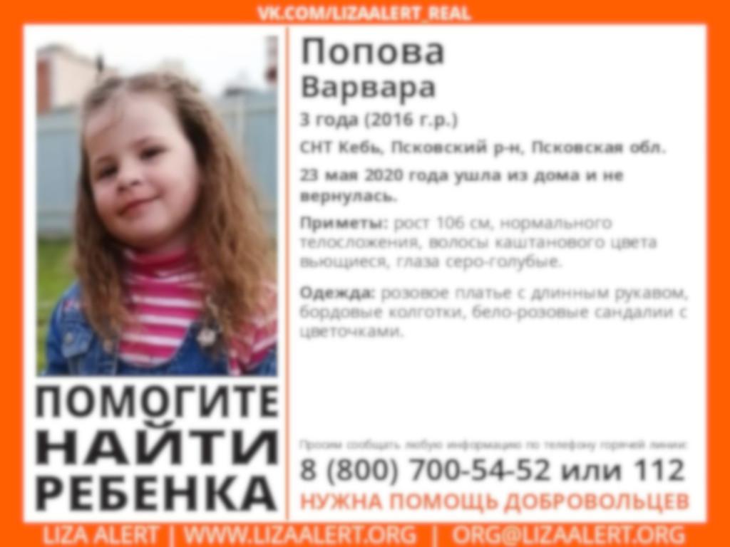 Поиски пропавшей в Псковской области трехлетней Вари продолжаются…