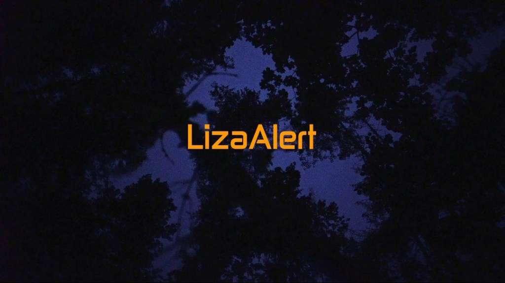 """Премьера сериала """"Неспокойные ночи. LizaAlert"""" уже скоро!"""